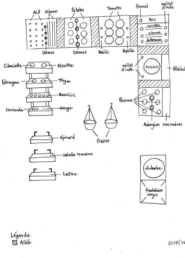 Plan de mon jardin 2018 : version 2