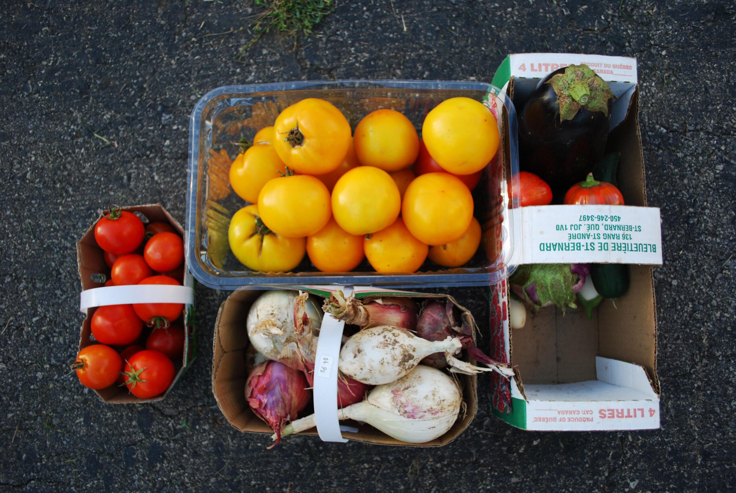 Paniers de fruits et de légumes